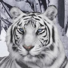 White Tiger Head.jpg