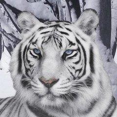 White Tiger Head.jpg